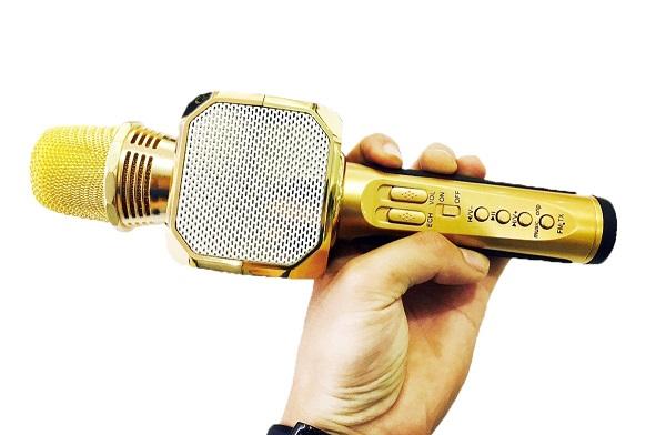 tim hieu micro karaoke 2 1 - Tìm hiểu về các dòng micro karaoke gia đình trên thị trường hiện nay