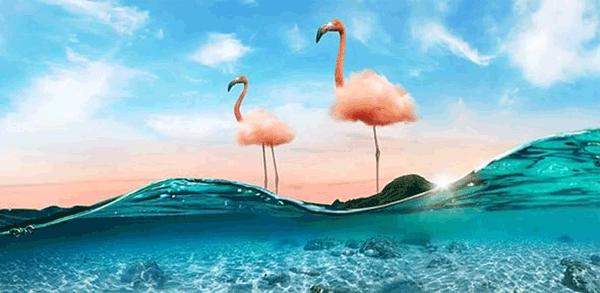 adobe 2021 timrim - [Review] Phần mềm Adobe Photoshop 2021 Full Crack - Tải và cài đặt